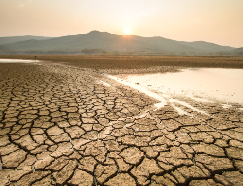 AWSP Letter Supporting House Select Committee on Climate Crisis
